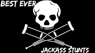 Best ever jackass stunts!!!
