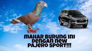 Download Mp3 Kasep Juara 1 New Vixion Lapak Curug Mkm Team Di Mahari Dengan New Pajero Sport!