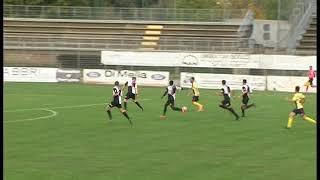 Serie D - Aquila Montevarchi-Trestina 1-0