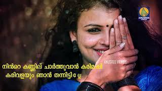 കാരമുള്ളിന്റെ നോവോടെ Lyrics Video Song   Malayalam Musical Song 2020   Karamullinte Novode