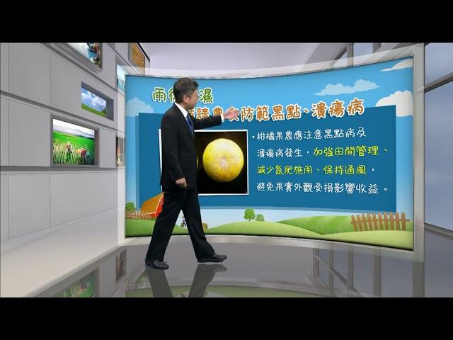 2020.10.12─嘉愷農業氣象週週報