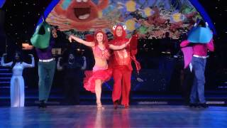 Strictly Come Dancing Live! 2015 tour highlights!
