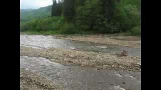 Ріка Чорна Тиса - River Chorna Tysa