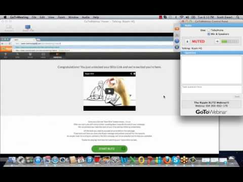 Rippln (Corporate) Blitz Webinar Recording - June 25, 2013