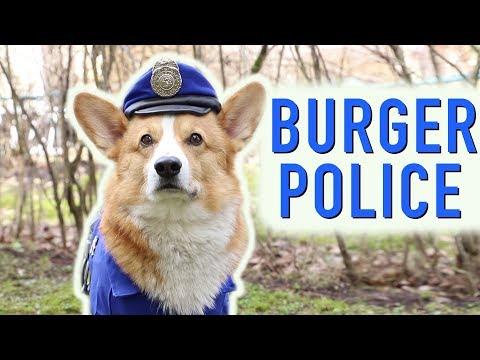 BURGER DETECTIVE - Topi the Corgi