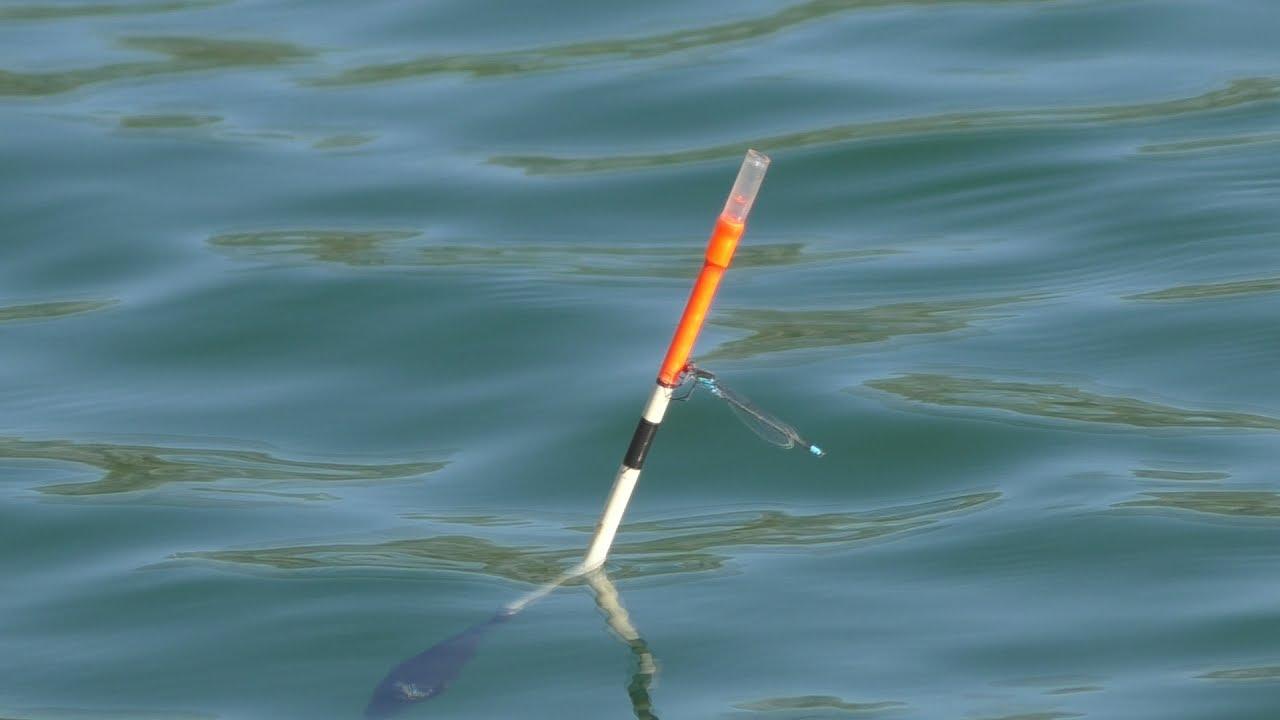 рыболовная снасть убийца карасей фото