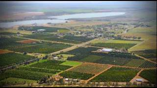 Citrus in the Riverina - Australia's Food Bowl