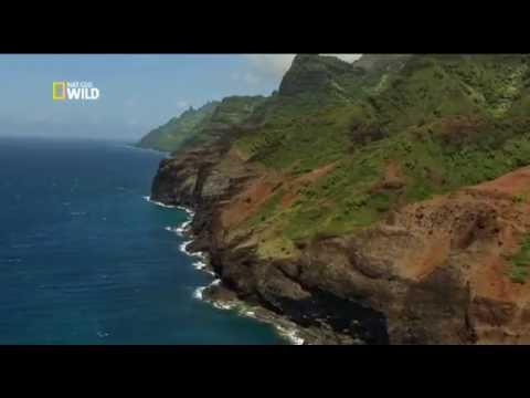 Дикие Гавайи - Огненный край. Wild Hawaii - Land of Fire 2013 Nat Geo Wild