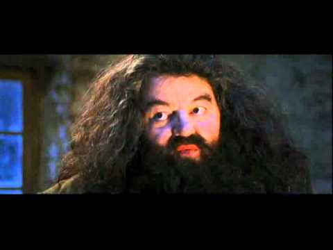 you re a wizard harry youtube