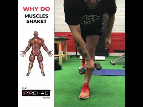 Why Do Muscles Shake? - YouTube