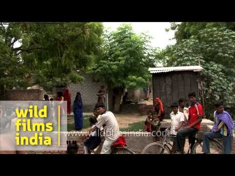 Simple village life in India near Varanasi, Uttar Pradesh