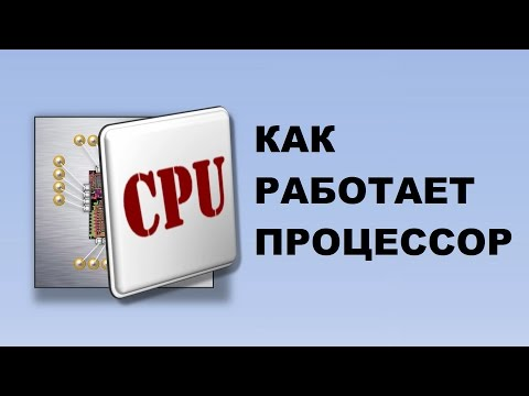 Как работает процессор
