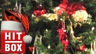 Am Weihnachtsbaume die Lichter brennen