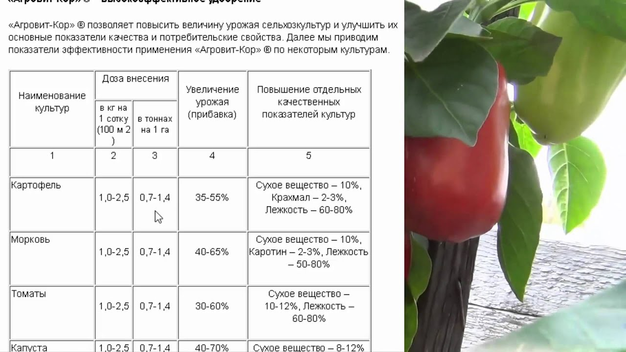 Агровит-кор почвообразующее суперудобрение, включающее в себя. В то же время цена «агровит-кор» на сегодняшний день.