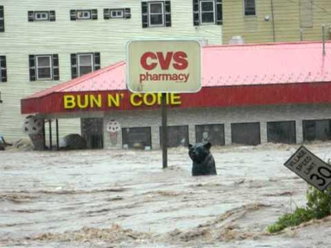Margaretville Catskills Irene Flood