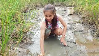 WOW Sexy Girl Fishing at battambang Province in cambodia Traditional Fishing(part77)