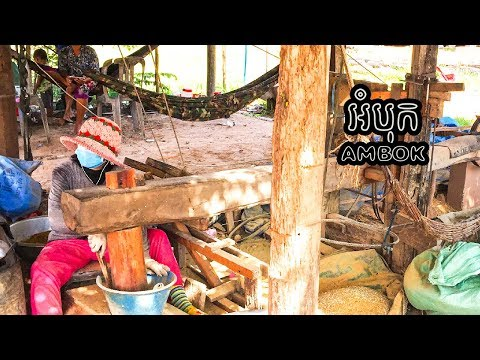 Ambok   Khmer Dried Rice   How it made by DIY