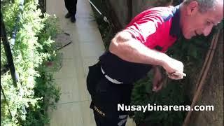 Nusaybin'de evin bahçesine giren yılanı itfaiye ekipleri yakaladı