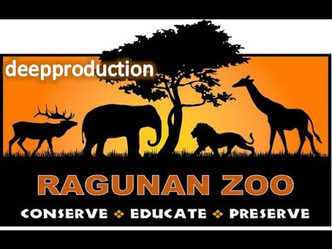 Taman Binatang Ragunan   Best Zoo 2016