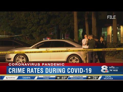 Tampa crime rate amid pandemic