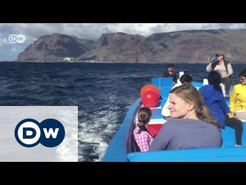 Whale-friendly whale watching | Eco-at-Africa