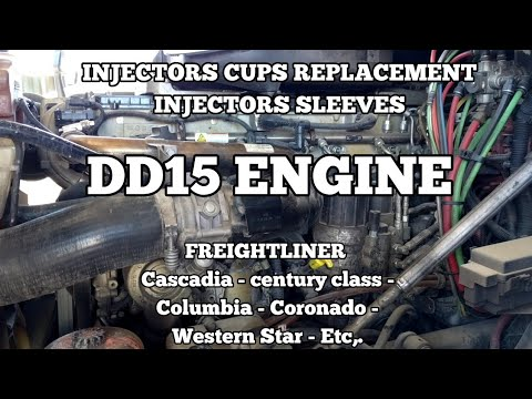 Freightliner Cascadia DD13 DD15 ENGINE Injectors Cups Replacement Fuel In Coolant Coolant In Fuel