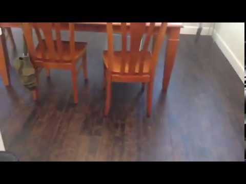 Aquaguard laminate flooring installation flooring for Laminate wood flooring installation companies