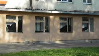 Декор интерьера, огромный черный кот за окном