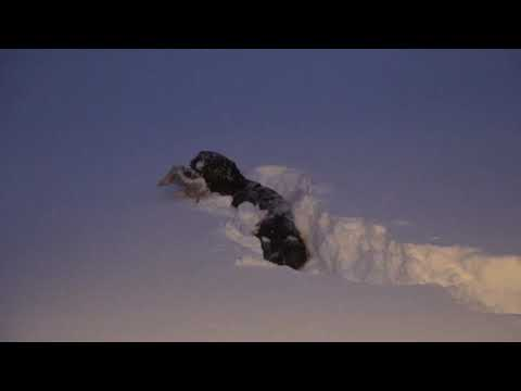 """Digging out of 30"""" of snow, Blizzard Nemo"""
