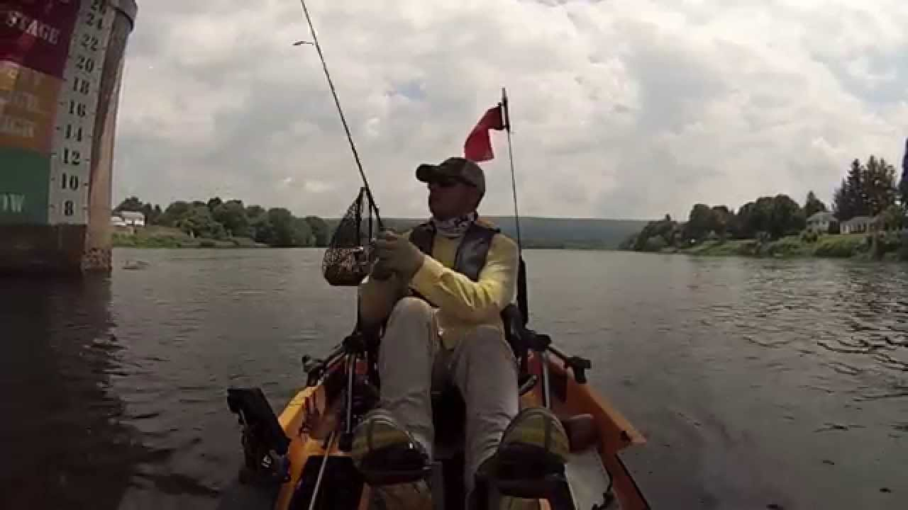 Kayak fishing new york the delaware river at port jervis for York river fishing report