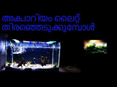 how-to-select-right-led-aquarium-light-with-english-subtitles|-venus-aqua-led-light-|amazon-product