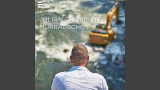 Gambar cover Murrauschen