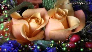 Without You - Air Supply(W/LYRICS)