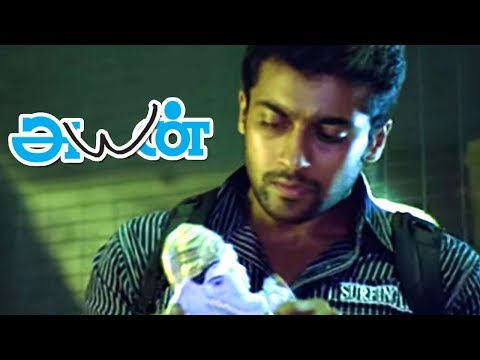 Ayan Tamil Movie scenes | Surya & Ponvannan Seize Cocaine fr