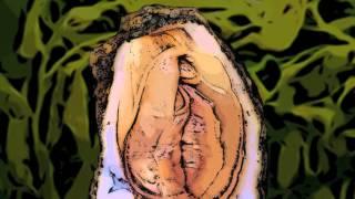 Damp Squib  -  Paulus Amicus (Lyrics) FULL QUALITY- HD