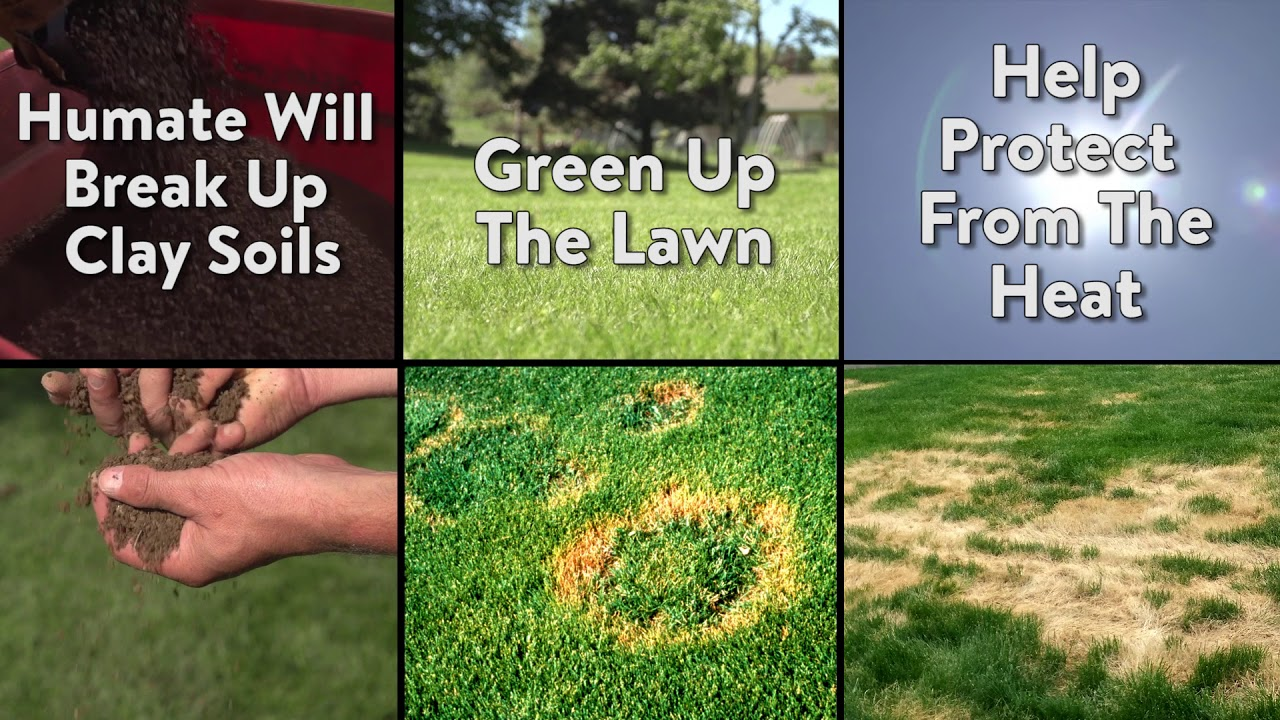 Humate Soil Conditioner - Organic Soil Treatment for Lawns