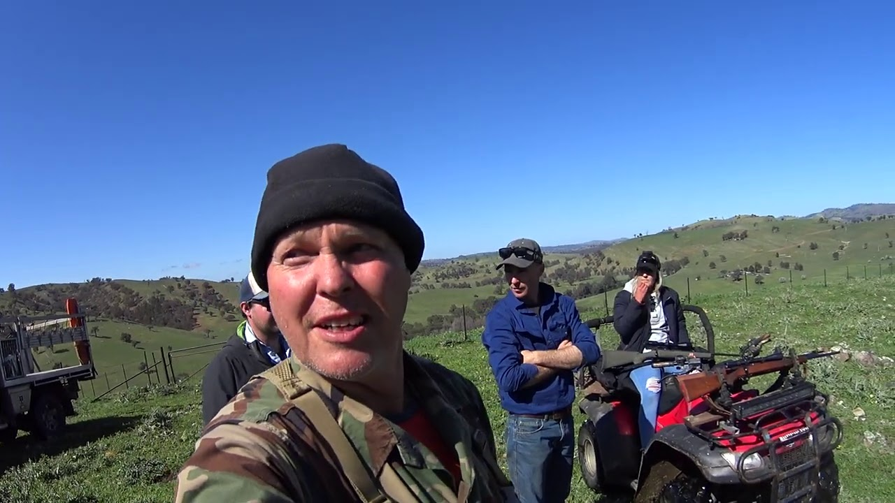 Final clip from the mountain pig hunt