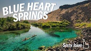 Blue Heart Springs | Hagerman, Idąho (Vlog)