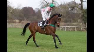 Homefield Racing Stables promo