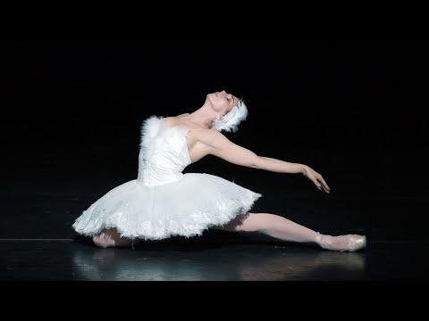 The Dying Swan – Natalia Osipova (The Royal Ballet)