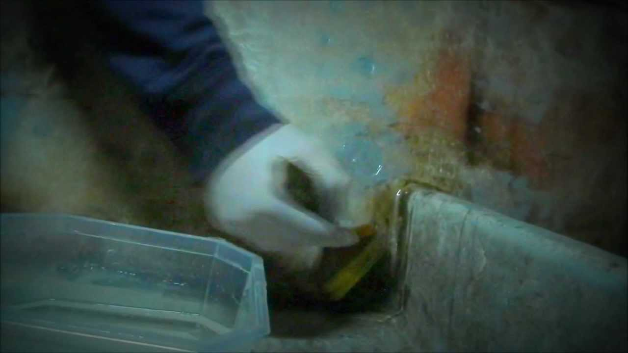 Fabulous TeamBockwurst laminiert- der Umgang mit Epoxidharz und Glasfasern JM44