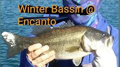 Encanto Park Winter Bass Fishing, Phoenix, AZ
