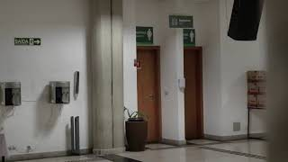 CULTO MATUTINO 2 (11:00H) | Igreja Presbiteriana de Pinheiros | [IPPTV]