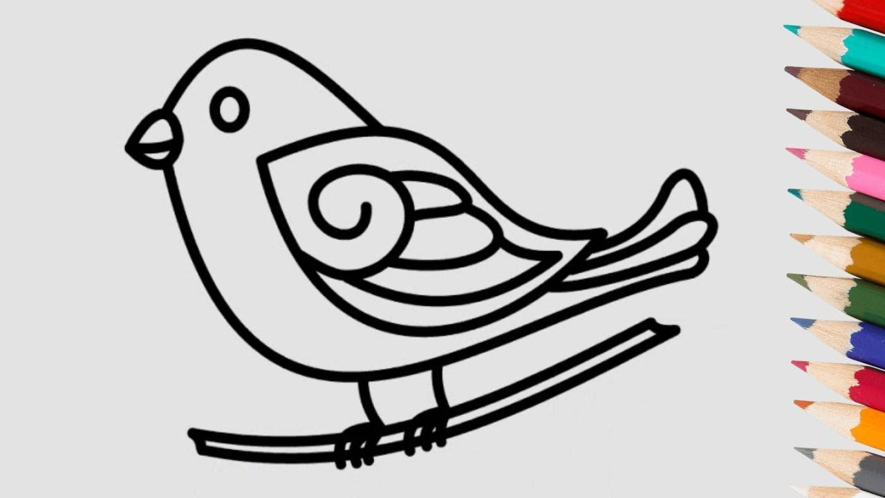 - How To Draw A Bird Coloring Page Coloring Book For Kids Color