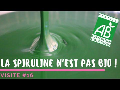 Spiruline Achat : Guide d'achat - Plantes - Propriétés | Quels sont les effets secondaires ?