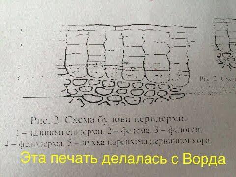 [Решения] Принтер плохо печатает рисунки через Word
