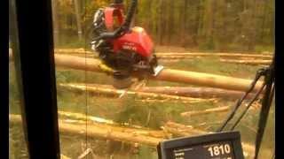 Zrąb w wykonaniu harvester Valmet 911 ,3
