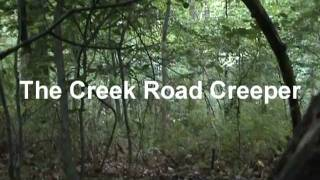 The Creek Road Creeper