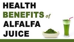 hqdefault - Alfalfa Hay Kidney Problems