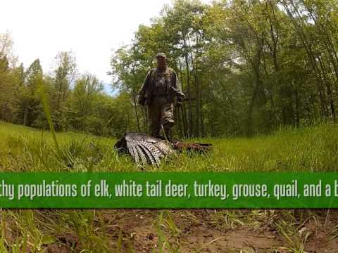 Bell County Adventure Tourism Promo: Hunting